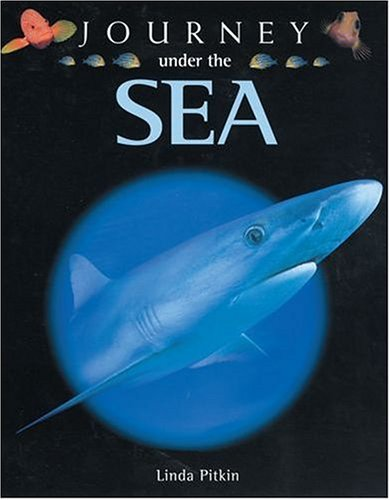 9780199108992: Journey Under the Sea