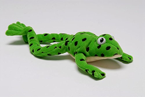 9780199116546: Read Write Inc.: Fred the Frog - Toy
