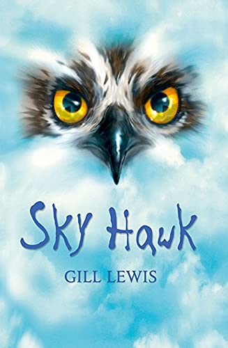 9780199137190: Rollercoasters: Sky Hawk Reader