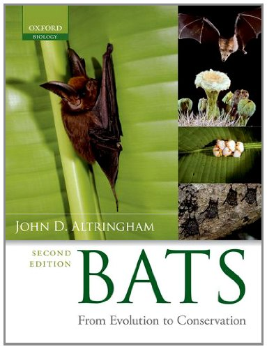 9780199207121: Bats: From Evolution to Conservation
