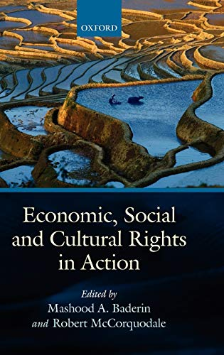 9780199217908: Economic, Social, and Cultural Rights in Action