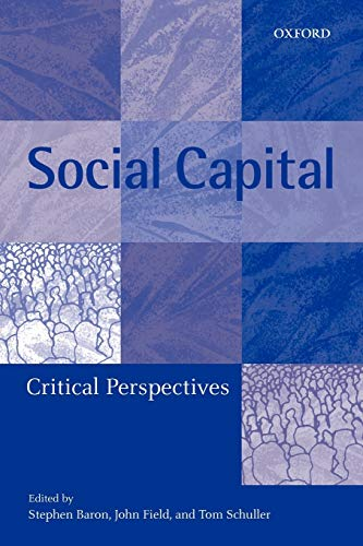 9780199243679: Social Capital: Critical Perspectives