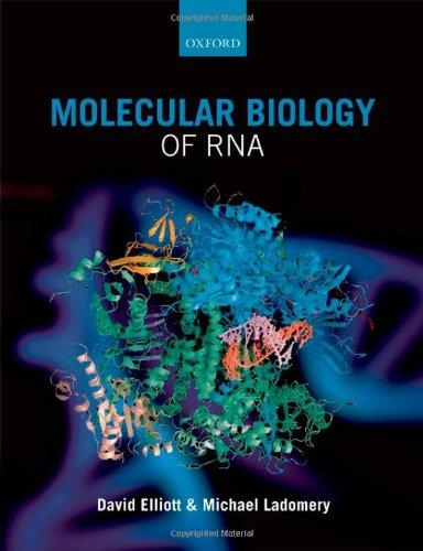9780199288373: Molecular Biology of RNA