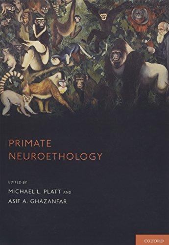 9780199338900: Primate Neuroethology