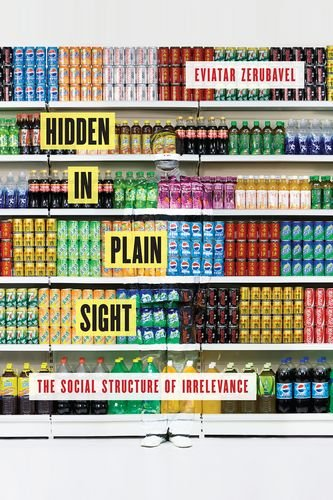 9780199366606: Hidden in Plain Sight: The Social Structure of Irrelevance