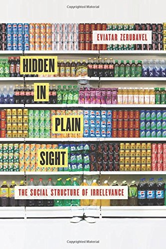 9780199366613: Hidden in Plain Sight: The Social Structure of Irrelevance