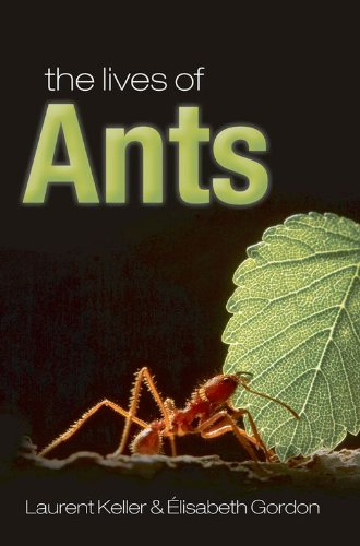 9780199541874: The Lives of Ants