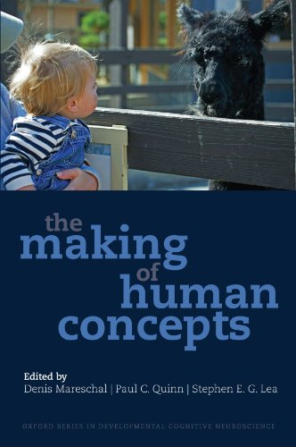 9780199549221: The Making of Human Concepts (Developmental Cognitive Neuroscience)