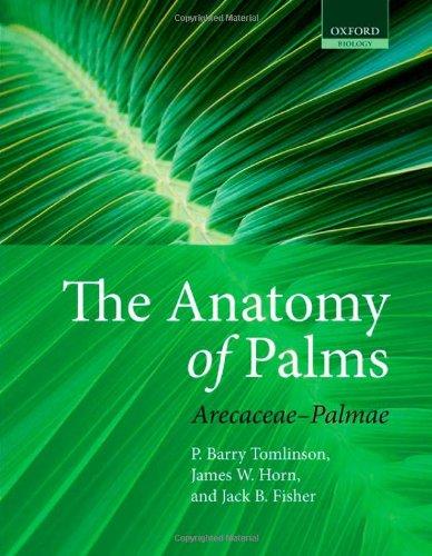 9780199558926: The Anatomy of Palms: Arecaceae - Palmae (Oxford Biology)