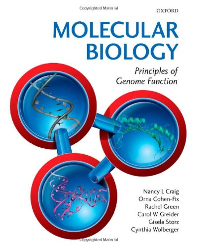 9780199562060: Molecular Biology: Principles of Genome Function