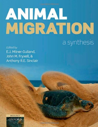 9780199568994: Animal Migration: A Synthesis