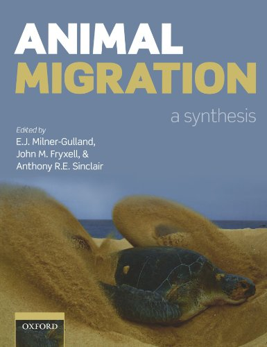 9780199569007: Animal Migration: A Synthesis