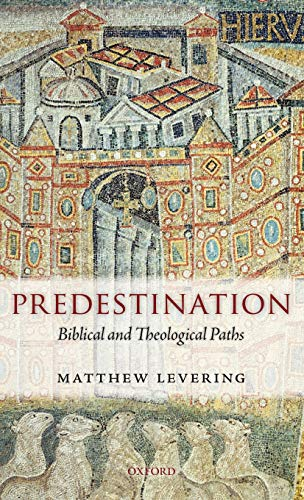 9780199604524: Predestination: Biblical and Theological Paths