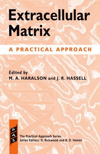 9780199632206: Extracellular Matrix: A Practical Approach (Practical Approach Series)