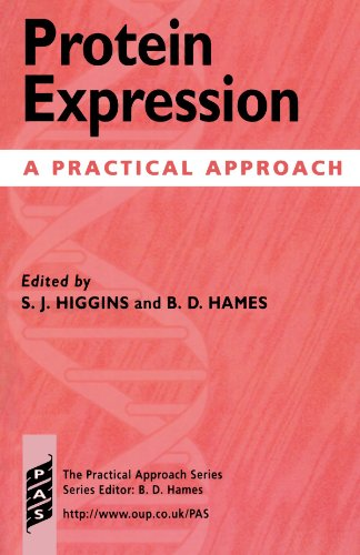 Protein Expression: A Practical Approach (Practical Approach: Unknown