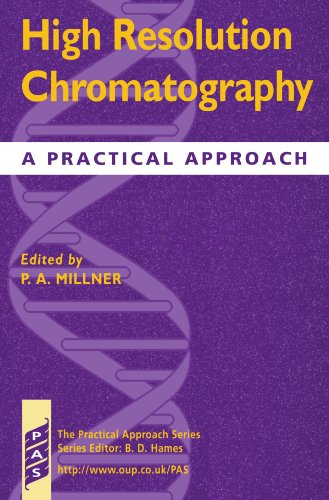 9780199636488: High Resolution Chromatography: A Practical Approach (Practical Approach Series)