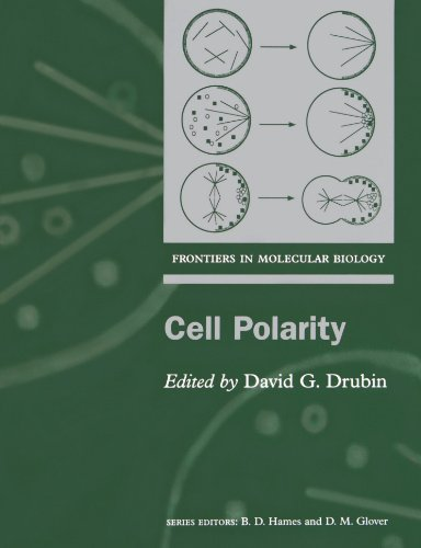 Cell Polarity (Practical Approach)