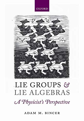 9780199662920: Lie Groups and Lie Algebras - A Physicist's Perspective