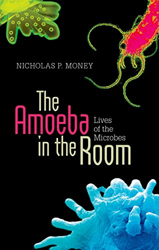 The Amoeba in the Room: Lives of the Microbes (Hardback)