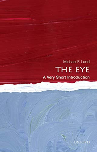 9780199680306: The Eye: A Very Short Introduction (Very Short Introductions)