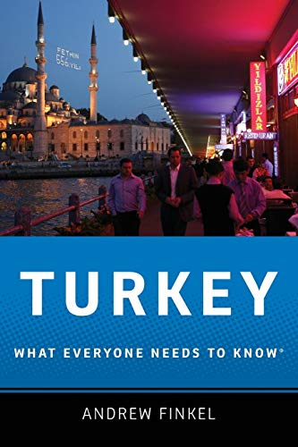 9780199733040: Turkey: What Everyone Needs to Know