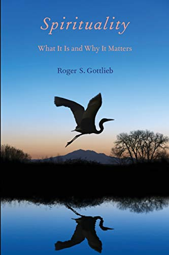 9780199738755: Spirituality: What It Is and Why It Matters
