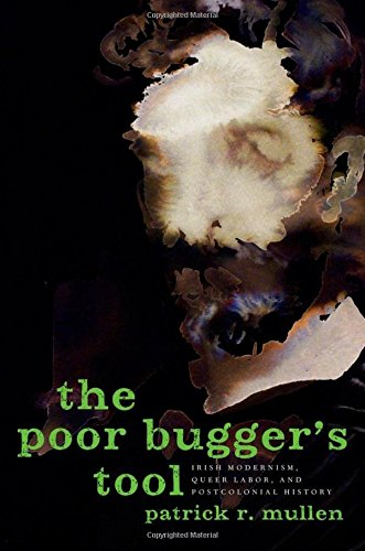 9780199746699: The Poor Bugger's Tool: Irish Modernism, Queer Labor, and Postcolonial History