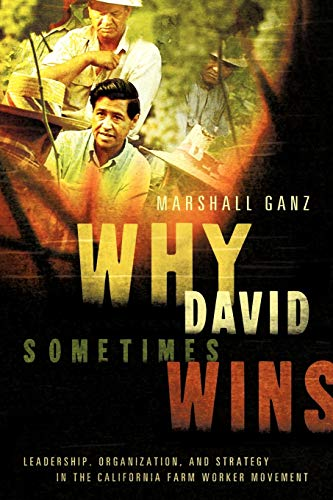 9780199757855: Why David Sometimes Wins: Leadership, Organization, and Strategy in the California Farm Worker Movement