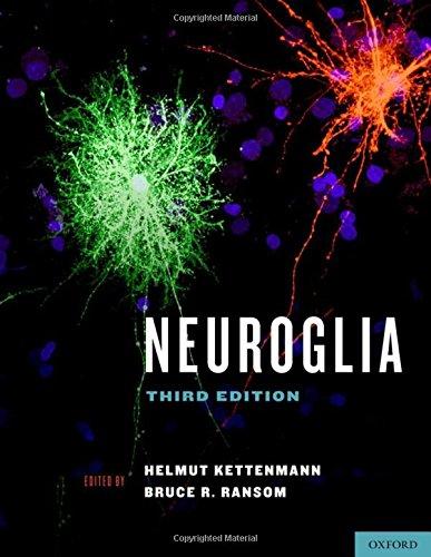 9780199794591: Neuroglia