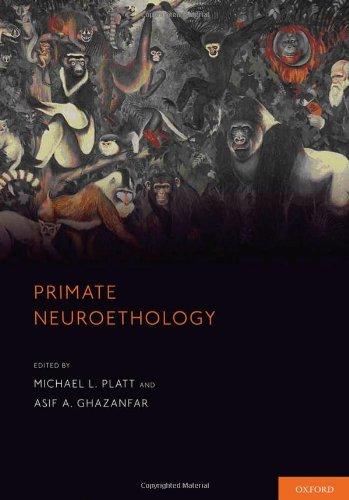 9780199929245: Primate Neuroethology