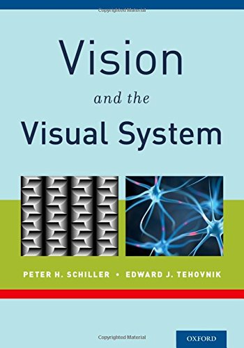 9780199936533: Vision and the Visual System