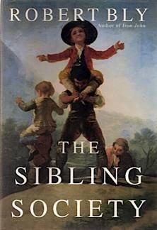 9780201461336: The Sibling Society