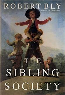 9780201461336: The Sibling Society