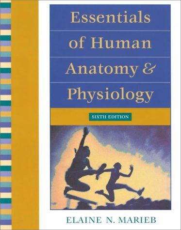 9780201661620: Essentials of Human Anatomy & Physiology