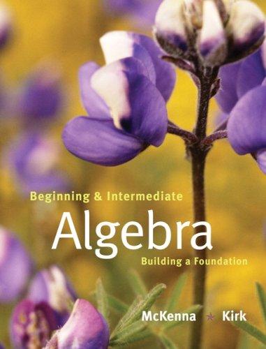 Beginning and Intermediate Algebra: Building a Foundation: Paula McKenna; Honey Kirk