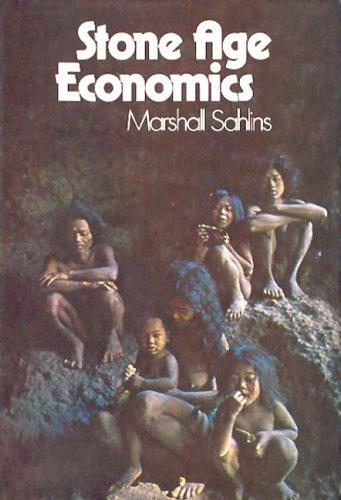 9780202307879: Stone Age Economics