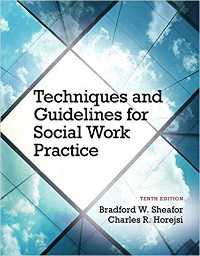 9780205149148: Techniques and Guidelines for Social Work Practice