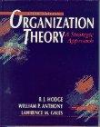 9780205152742: Organizational Theory: A Strategic Approach