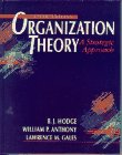9780205152742: Organization Theory: A Strategic Approach (5th Edition)