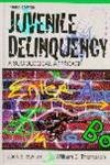 9780205159284: Juvenile Delinquency: A Sociological Approach