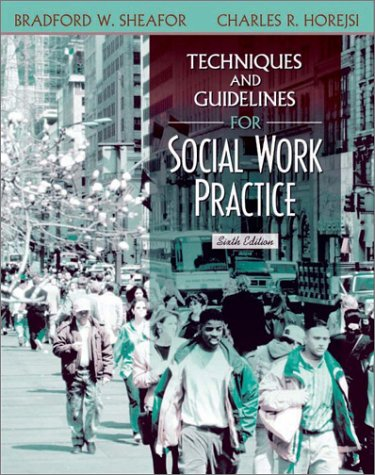 9780205352319: Techniques and Guidelines for Social Work Practice (6th Edition)