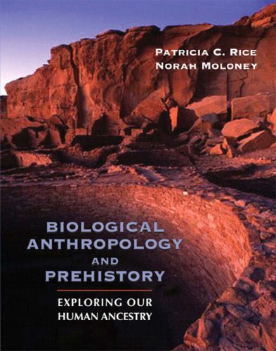 9780205381968: Biological Anthropology and Prehistory: Exploring Our Human Ancestry
