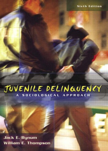 9780205401505: Juvenile Delinquency: A Sociological Approach (6th Edition)