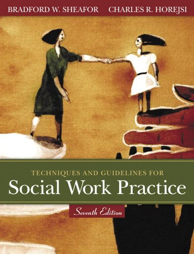 9780205446179: Techniques and Guidelines for Social Work Practice (7th Edition)
