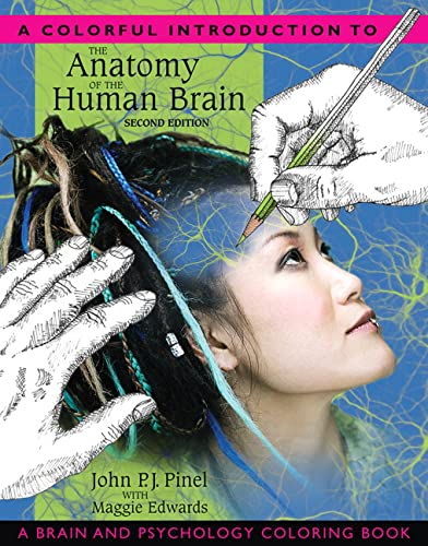 9780205548743: A Colorful Introduction to the Anatomy of the Human Brain: A Brain and Psychology Coloring Book