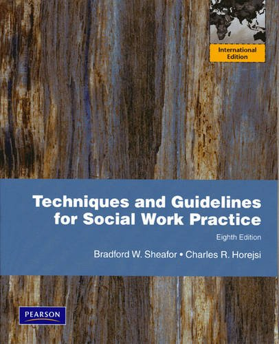 9780205726653: Techniques and Guidelines for Social Work Practice: International Edition
