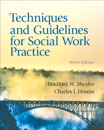 9780205838752: Techniques and Guidelines for Social Work Practice (9th Edition)