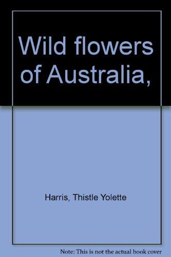 9780207122705: Wild Flowers of Australia