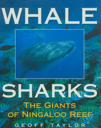 Whale Sharks: The Giants of Ningaloo Reef (0207184984) by Taylor, Geoff