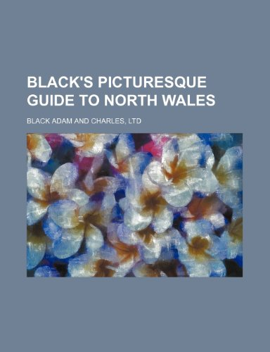 9780217182713: Black's picturesque guide to North Wales